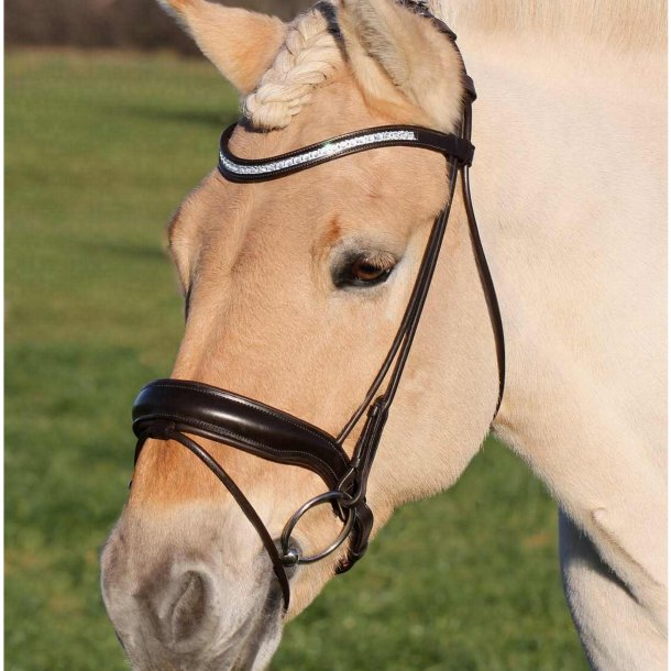 SD® CROWN Bellini Rolled bridle with gel padding. Brown/Brown. PONY/XFULL. R-203