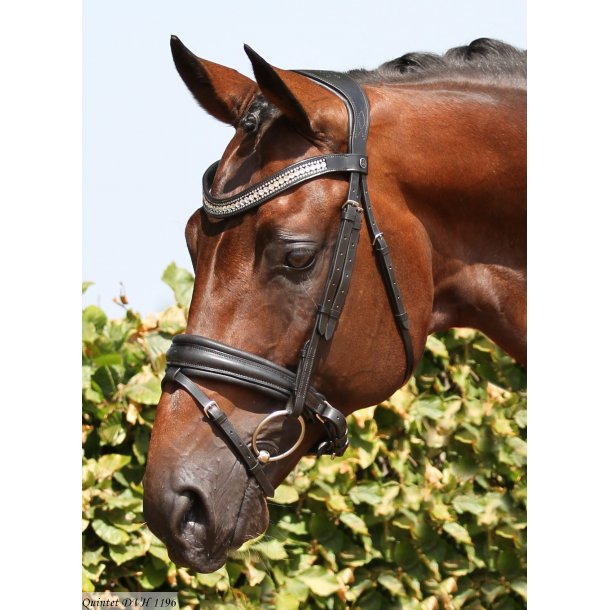 SD® CROWN Show Master bridle in black/black. Cob R-522