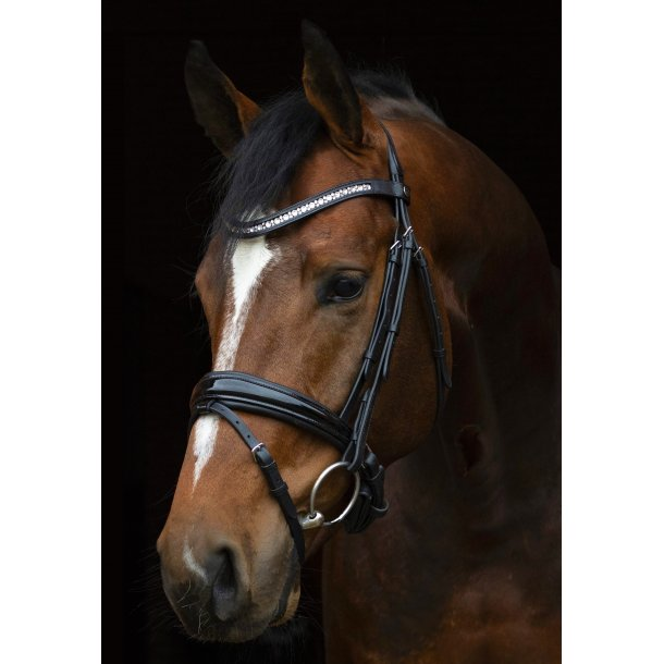 SD® CROWN Magic Touch bridle in black/black/black patent. FULL. R-570