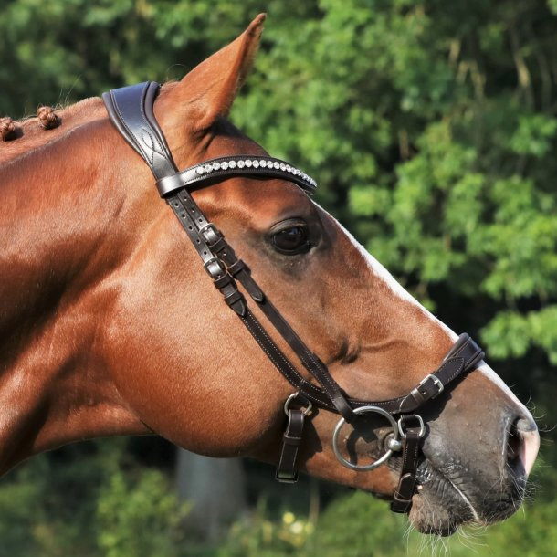 SD® CROWN Watch Out anatomic bridle in brown/brown. R-580