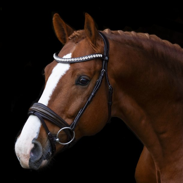 SD® Mystery bridle in Brown/Brown/Glitter patent. R-716