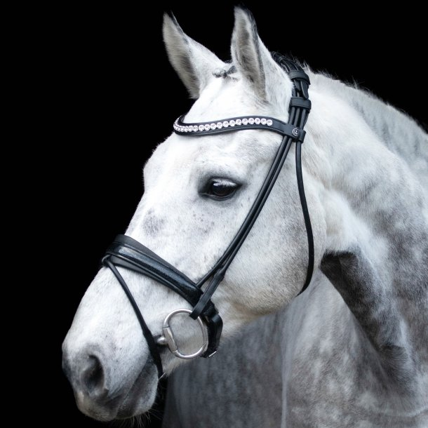 SD® Mystery rolled bridle in Black/Black/Glitter patent. Pony R-795