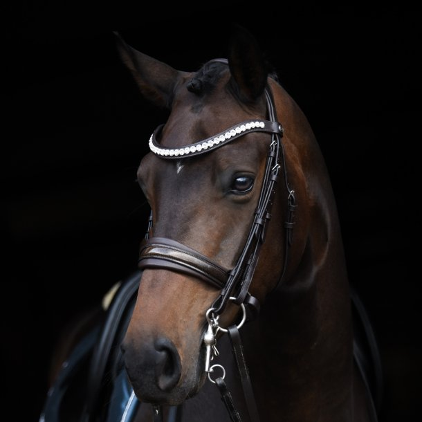 SD® Mystery Double bridle in Brown/Brown/Glitter patent. R-801