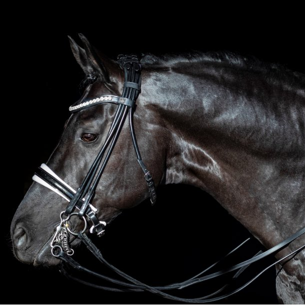 SD® Mystery Rolled Double bridle in Black/White/Glitter patent. Full R-804
