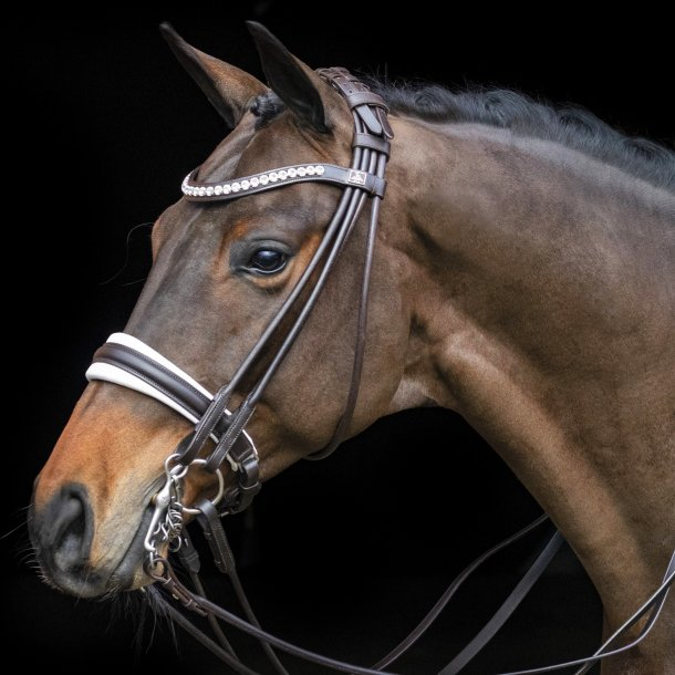 SD® Belissimo rolled double bridle in brown/white. R-838