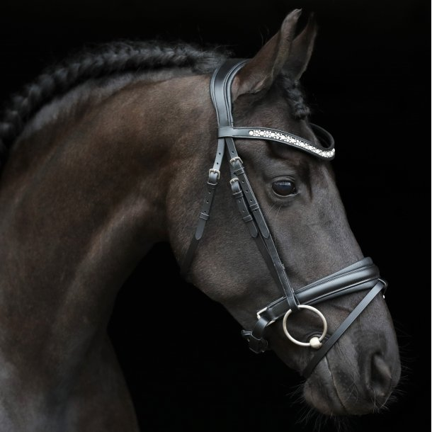 SD® Lendario Bridle. Black/Black. R-865