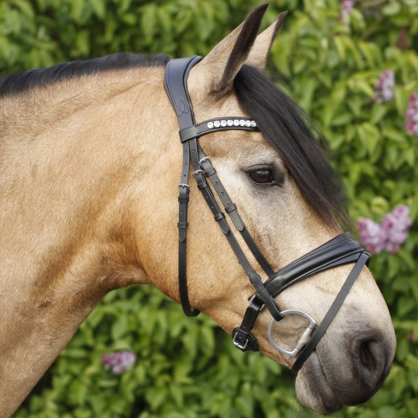 SD® CROWN Belissimo bridle in Black/Black. R-740