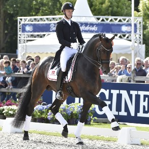 World Championsship in Dressage for young horses, Team Denmark