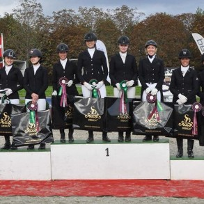 Danish Championsship in dressage for Club teams