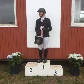Danish Championsship for Haflinger