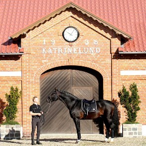 Sponsored stables